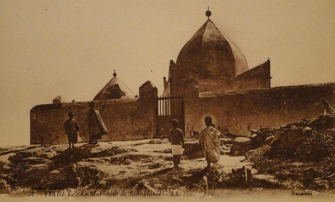 The Making of Saints in the Muslim World in the 20th Century